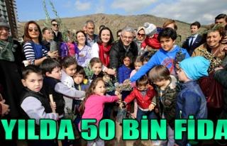 3 Yılda 50 Bin Fidan