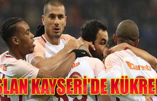 Aslan, Kayseri'de Güle Oynaya...