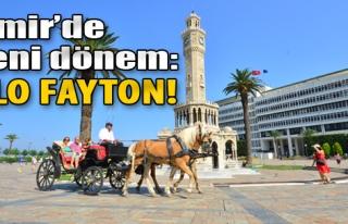 Alo Fayton!