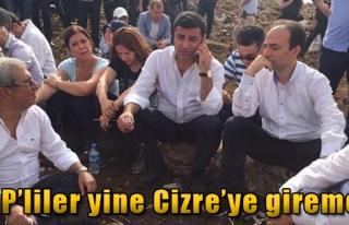Cizre'ye Gitmek İsteyen HDP'lilerin Yolu İdil'de...