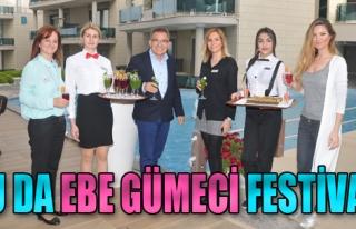 Bu da Ebe Gümeci Festivali