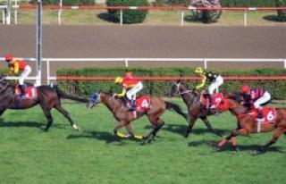 62. Başbakanlık Kupası Koşusu