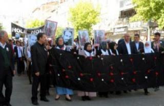 Şırnak ve Bingöl'de, Ankara Protestosu
