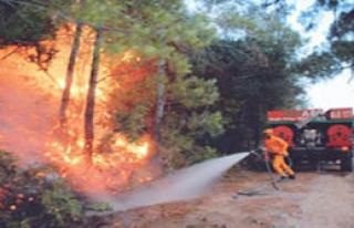 Milas'da Yangın