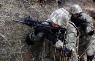 PKK'lılara Yönelik Operasyonlar Sürüyor