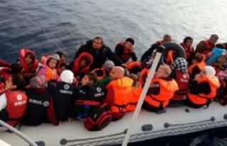 Kaçak Mülteci Operasyonuna Devam