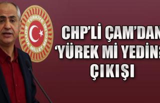 CHP'li Çam'dan Binali Yıldırım'a Tepki