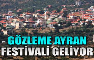 Bayraklı'da Festival Zamanı