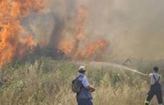 Foça'yı Korkutan Yangın