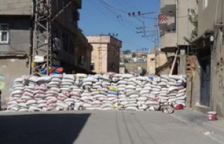 Şırnak'ta 2 İlçede Sokağa Çıkma Yasağı
