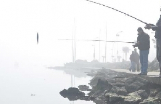 Samsun'da sis etkili oldu
