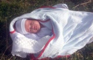 Bebek Yol Kenarına Terk Edildi