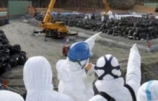 Japonya'da Nükleer Molası
