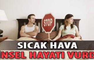 Sıcak Hava, Cinsel Hayatı Vurdu