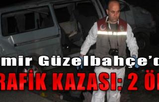 Güzelbahçe'de Trafik Kazası