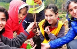 Bodrum'da Yeşil Seferberlik