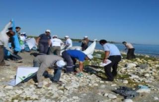 Adilcevaz'da Dünya Kıyı Temizliği Etkinliği