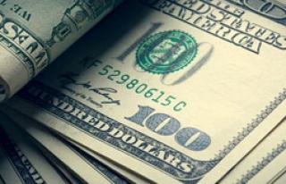 Dolar, Bir Anda Yükseldi