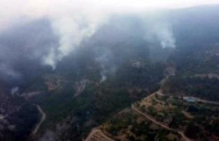 Amanoslar'da Teröristler Orman Yaktı