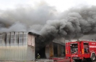 Aydın'da Sünger Deposunda Korkutan Yangın