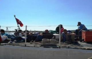 Ayvalık'ta 42 Suriyeli Kaçak Yakalandı