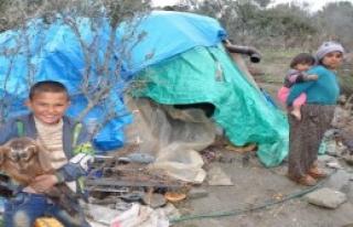 Bir Çadırda 8 Kişilik Aile