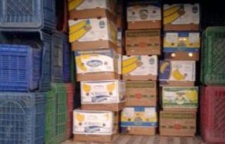 Muz Kolilerinde 20 Bin Paket Kaçak Sigara