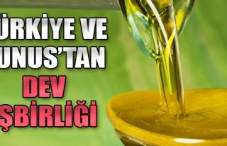 Türkiye ve Tunus Zeytin-Zeytinyağı Sektöründe...