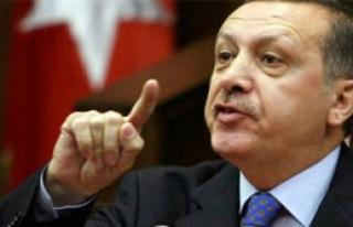 Erdoğan Gençlik Kollarında Esti, Gürledi