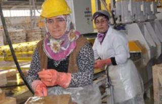 Mermer İşçisi Kadınlar Ekmeklerini Taştan Çıkartıyor