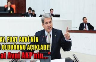 'Twitter Fenomeni Fuat Avni Paralel AKP'dir'