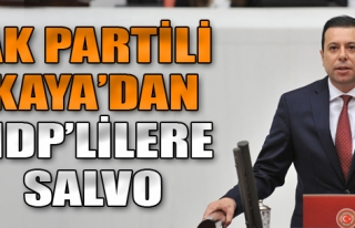 AK Partili Kaya'dan HDP'lilere Salvo