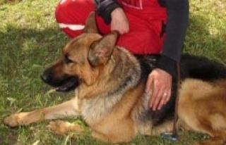 Soma'ya Bağış Yapana Köpek Yavrusu