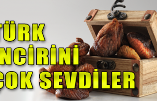 Türk İnciri Zirveye Yerleşti
