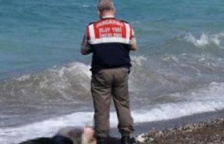 Datça Sahilinde Kadın Cesedi Bulundu