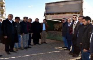 Çiftçilere 37 Küçükbaş Hibe Edildi