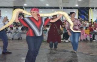 Dev Pitonla Dans