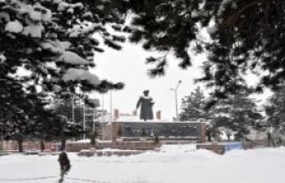 1306 Köy Yolu Kardan Kapandı
