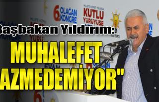 'Muhalefet AK Parti'yi Hazmedemiyor'