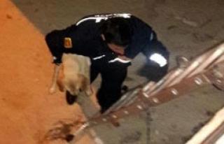 Yavru Köpeği İtfaiye Kurtardı