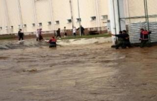 Ereğli'de Yağmur Sele Yol Açtı
