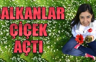 Balkanlar Çiçek Açtı