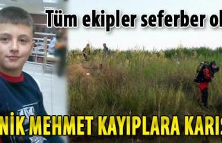 Kayıp Mehmet İçin Seferberlik