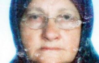 Alzheimer Hastası, Eşini Öldürdü, Bakıcıyı...