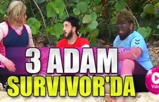 3 Adam Survivor'da