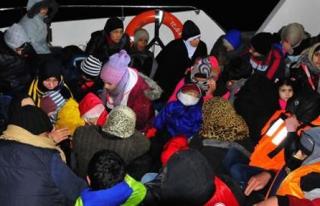 Ayvacık'ta 41 Suriyeli Yakalandı