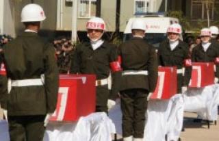 Nusaybin Şehitleri İçin Tören Düzenlendi