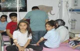 Cizre'de 55 Öğrenci Hastanelik oldu