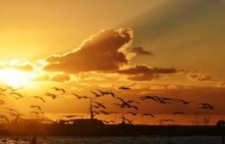 Gökyüzü Kuşlarla Renklendi
