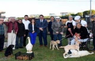 Huzurevi Sakinlerine Köpekli Rehabilitasyon